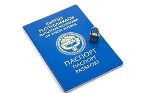 Получить гражданство рф гражданину киргизии в 2020 году уфмс